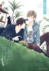 Yasashii Koi ga Sodatsu Made manga